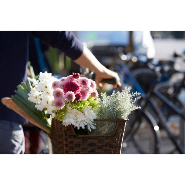 Pyöräkori tavaratelineeseen