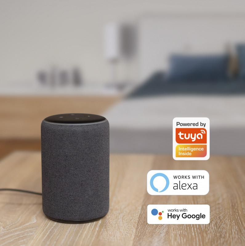 Ohjaa WiFi Älykodin laitteita äänelläsi | Google Assistant, Alexa | Masco Oy